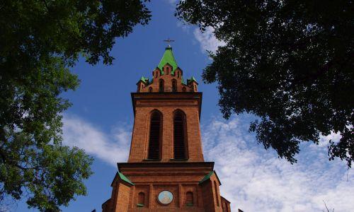 В Благовещенске осудили вора, согрешившего на территории православного храма