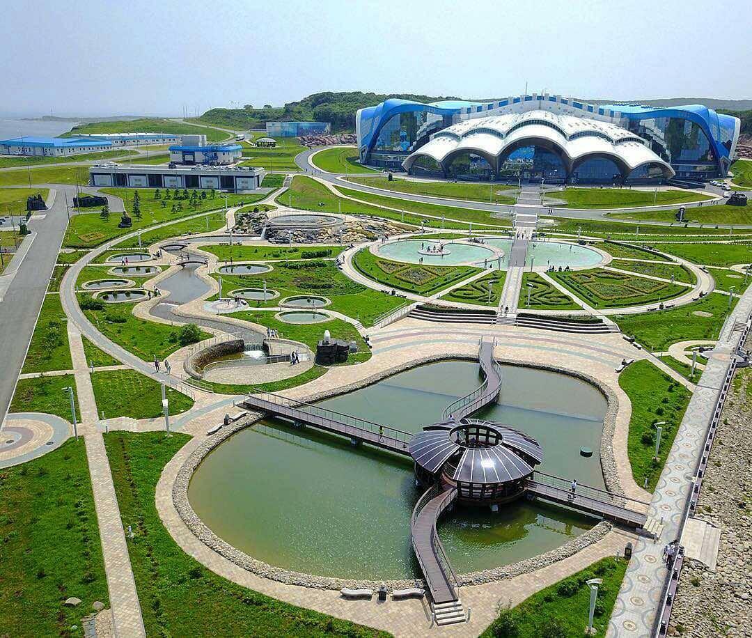 владивостокский океанариум на русском острове фото рулет-запеканка